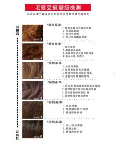 台中染髮、台中美髮、台中護髮、夏森髮型、韓系燙髮